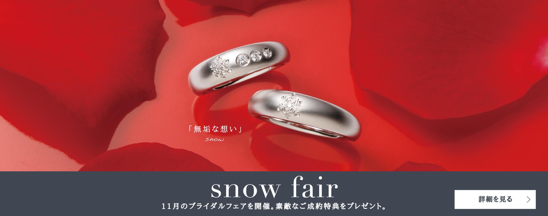 snow fair