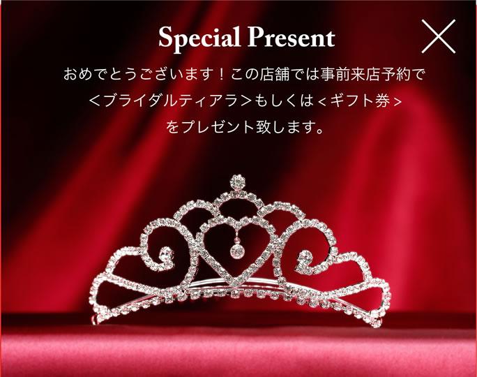 Bridal Tiara Present