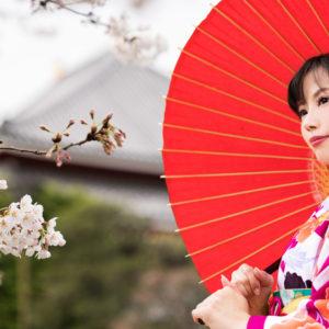 春の風物詩「桜」を結婚式の演出に取り入れる
