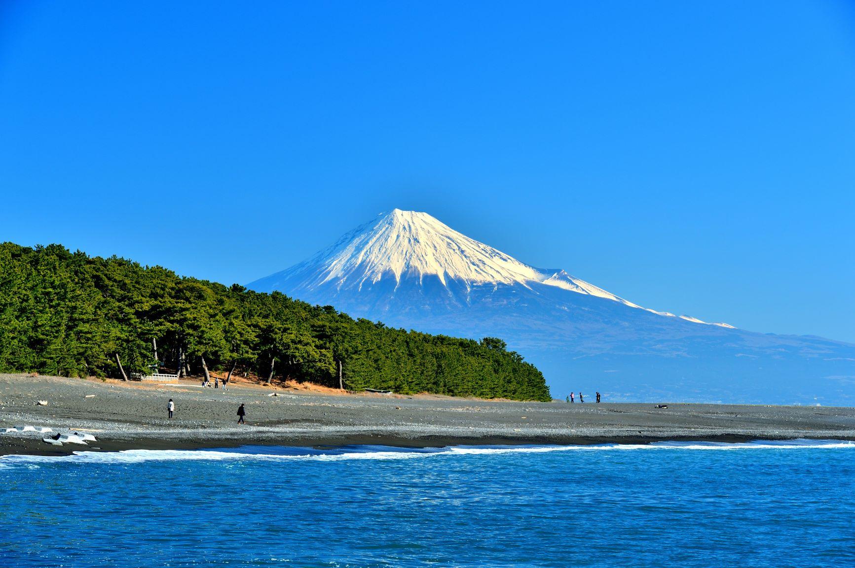 映画「ハルチカ」の聖地、静岡市清水でプロポーズの言葉をパートナーに!
